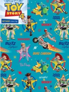 Toy Story Report