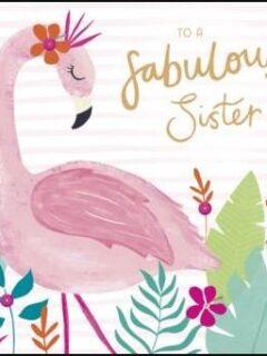 Flamingo Sister